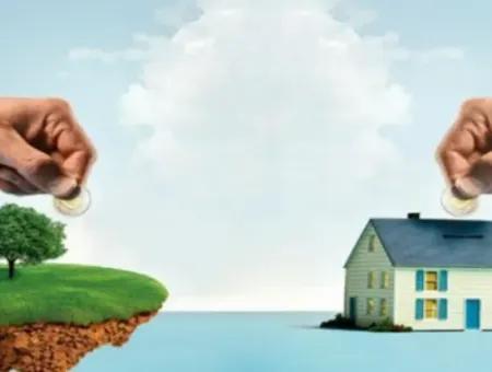Aydın Didim'de Satılık 32 Dönüm Yatırımlık Zeytinlik Arazi